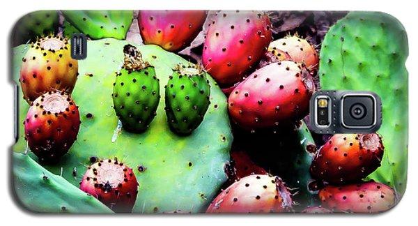 Forbidden Fruit Galaxy S5 Case