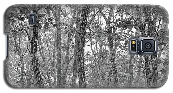 Forest #090 Galaxy S5 Case