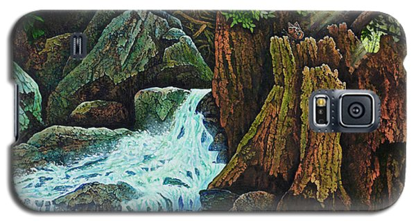 Forest Brook IIi Galaxy S5 Case