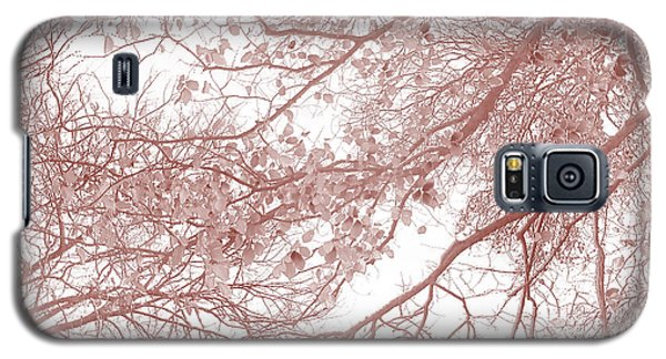 Featured Images Galaxy S5 Case - Forest Canopy by Az Jackson