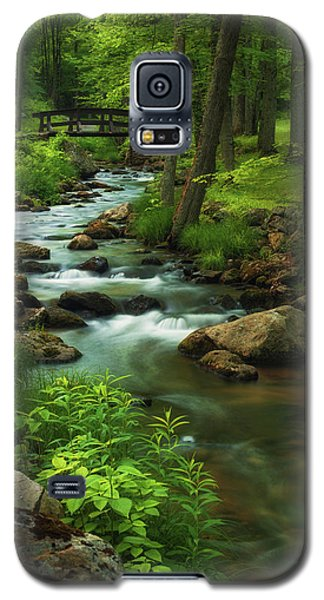 Forest Clearing Galaxy S5 Case