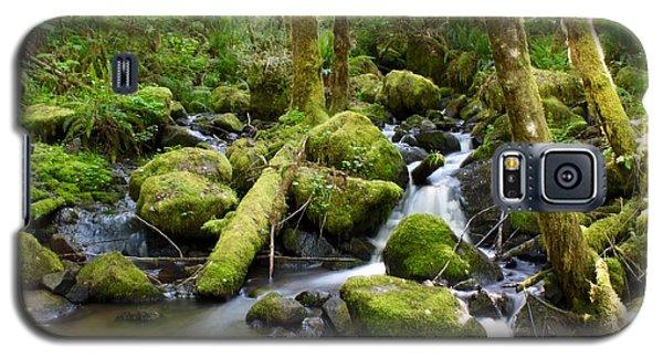 Forest Creek Galaxy S5 Case