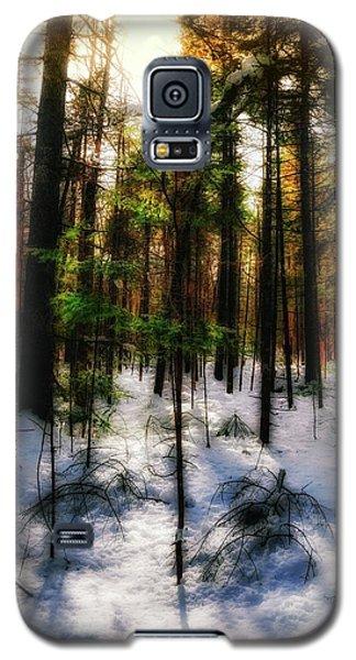 Forest Dawn Galaxy S5 Case