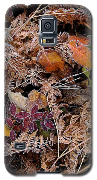 Forest Ferns Galaxy S5 Case