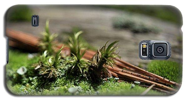 Forest Floor 2 Galaxy S5 Case