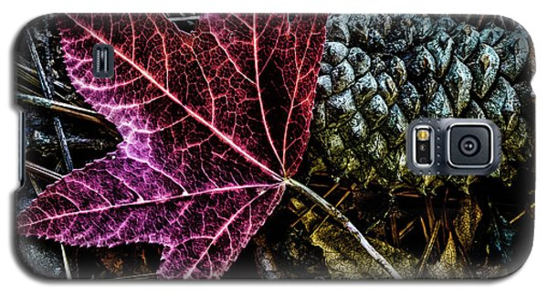 Forest Floor Galaxy S5 Case
