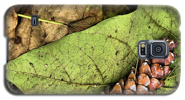 Forest Floor Still Life Galaxy S5 Case
