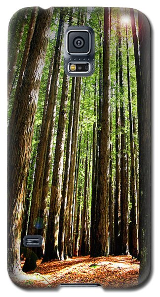 Galaxy S5 Case featuring the photograph Forest Glade by Marion Cullen