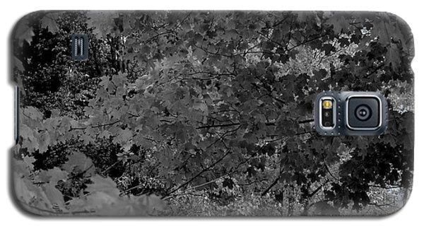 Forest Hut Galaxy S5 Case