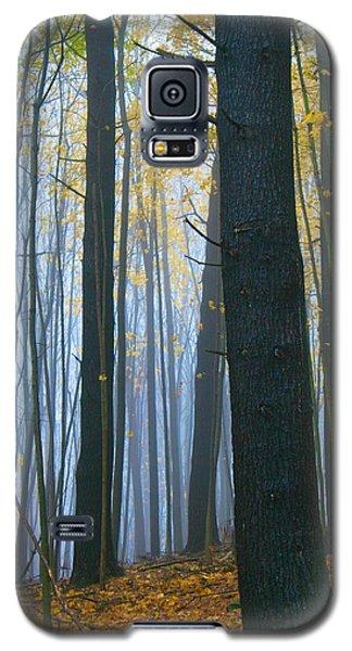 Forest In Fog Galaxy S5 Case