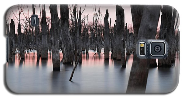 Forest In The Water Galaxy S5 Case