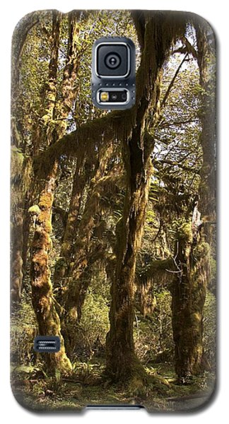 Forest Setting In Hoh Rain Forest Galaxy S5 Case