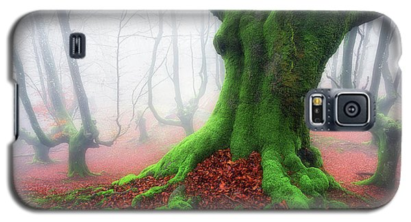 Forest Speeches Galaxy S5 Case