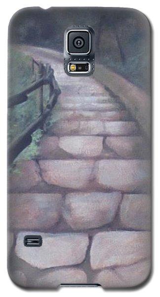 Forest Stairway Down Galaxy S5 Case