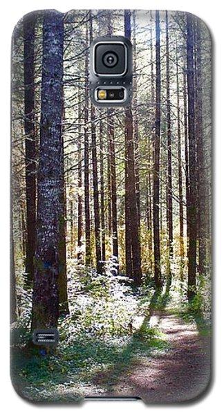 Forest Stroll Galaxy S5 Case