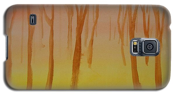 Forest Study Galaxy S5 Case