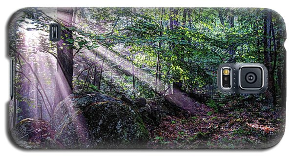 Forest Sunbeams Galaxy S5 Case
