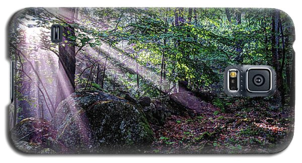 Forest Sunbeams Galaxy S5 Case
