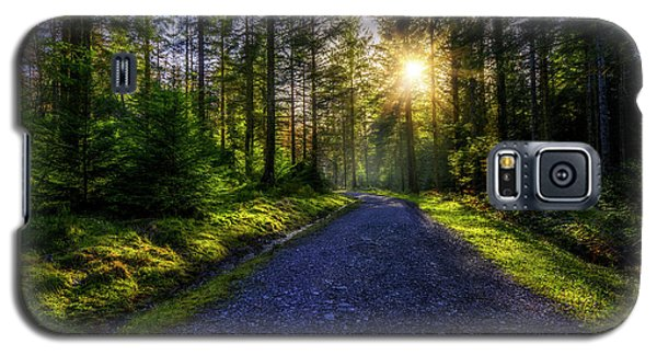 Galaxy S5 Case featuring the photograph Forest Sunlight by Ian Mitchell