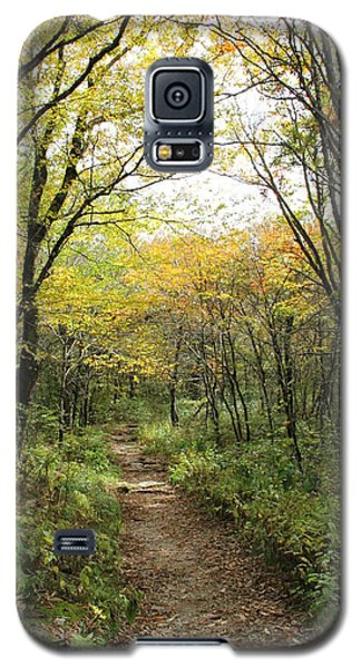 Forest Trail Galaxy S5 Case