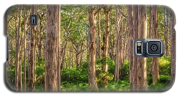 Forest Twilight, Boranup Forest Galaxy S5 Case by Dave Catley
