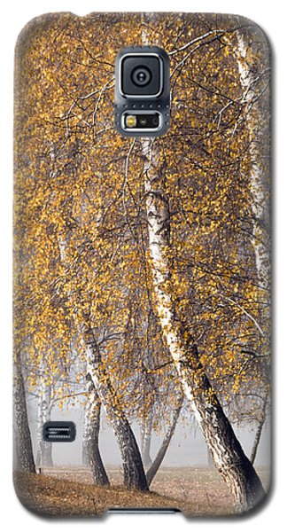 Forest With Birches In The Autumn Galaxy S5 Case by Odon Czintos