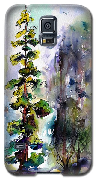 Forest With Redwood Trees Galaxy S5 Case