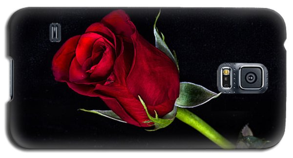 Forever Lasting Rose  Galaxy S5 Case