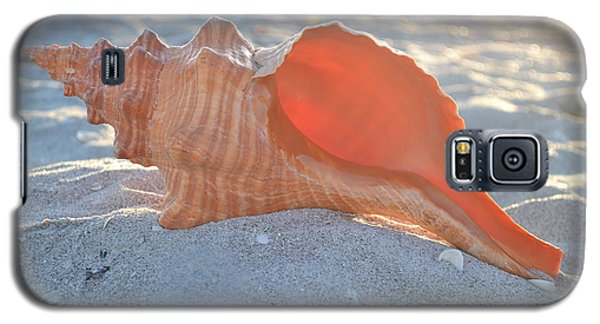 Galaxy S5 Case featuring the photograph Forever Sanibel by Melanie Moraga