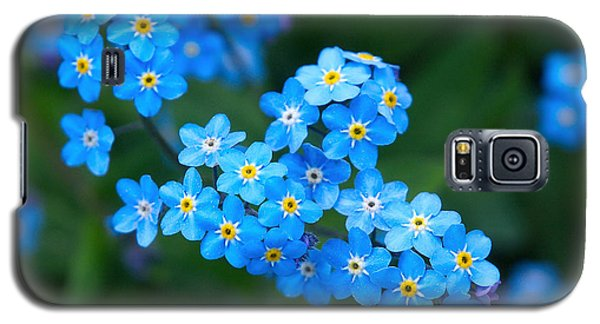 Forget -me-not 5 Galaxy S5 Case