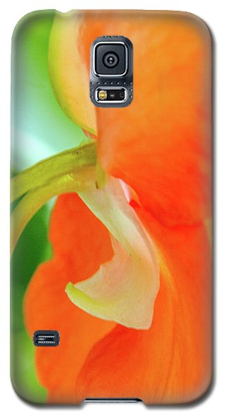 Galaxy S5 Case featuring the photograph Forget Me Not by Bill Gallagher