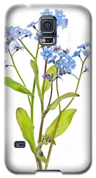 Forget-me-not Flowers On White Galaxy S5 Case