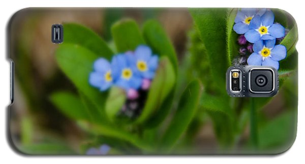 Forget Me Not Softly Galaxy S5 Case