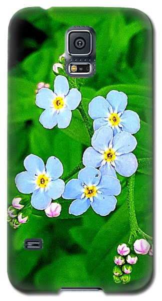 Forget Me Nots Galaxy S5 Case