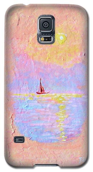 Forgotten Joy Galaxy S5 Case by Donna Blackhall