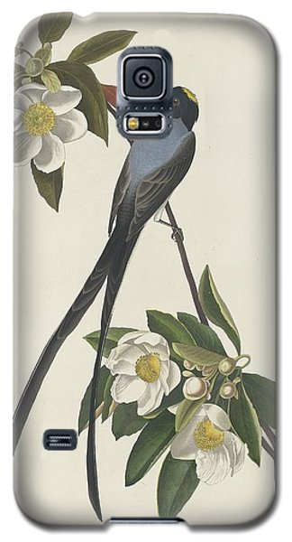 Forked-tail Flycatcher Galaxy S5 Case by Anton Oreshkin
