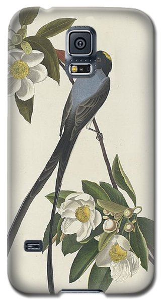 Blackbird Galaxy S5 Case - Forked-tail Flycatcher by Dreyer Wildlife Print Collections