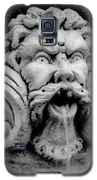 Fountain One  Bw Galaxy S5 Case