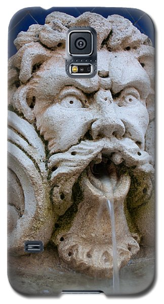 Fountain One Galaxy S5 Case