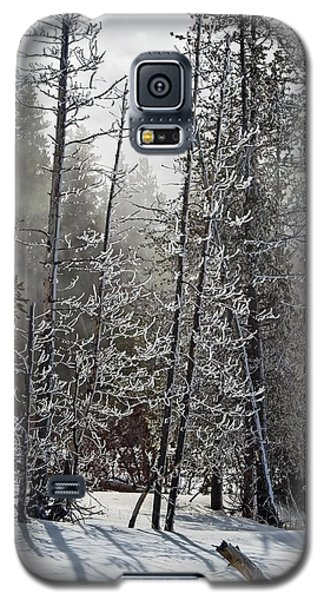 Fountain Paint Pots Shrouded In Snow And Ice Galaxy S5 Case
