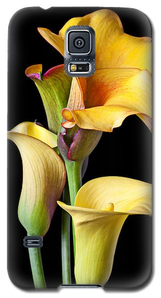 Lily Galaxy S5 Case - Four Calla Lilies by Garry Gay