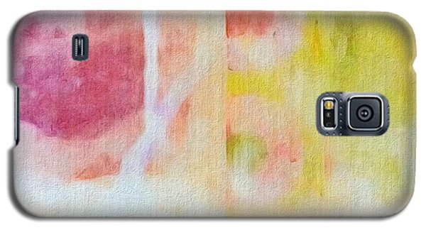 Four Corners Galaxy S5 Case by William Wyckoff