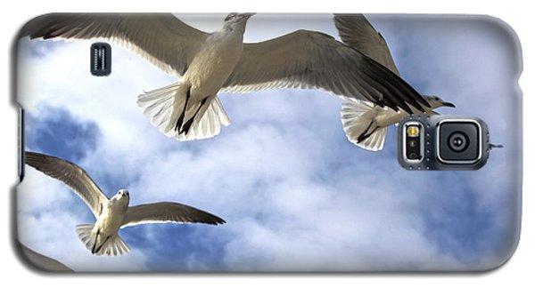 Four Gulls Galaxy S5 Case