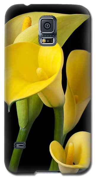Lily Galaxy S5 Case - Four Yellow Calla Lilies by Garry Gay