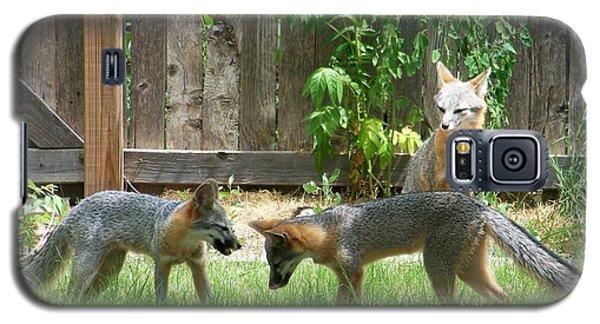Fox Family Galaxy S5 Case