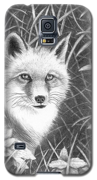 Fox Galaxy S5 Case by Lawrence Tripoli