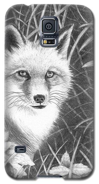 Fox Galaxy S5 Case by Lawrence Tripoli
