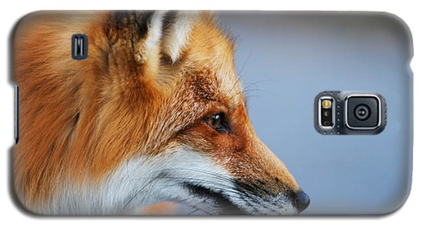 Fox Profile Galaxy S5 Case by Mircea Costina Photography