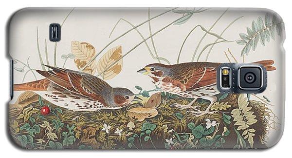 Fox Sparrow Galaxy S5 Case