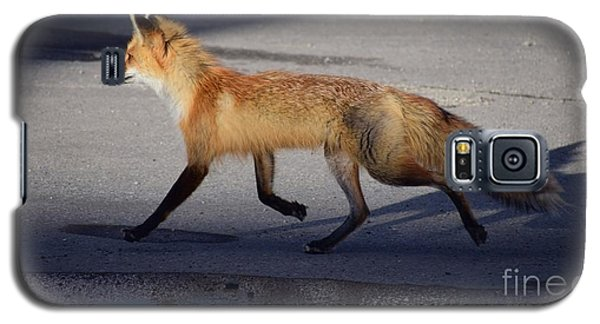 Fox Trot Galaxy S5 Case by Johanne Peale